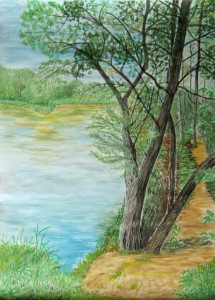 027-akwarela_papier-drzewa_nad_jeziorem-70x50cm