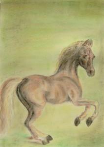 038-pastel_papier-kon-35x25cm